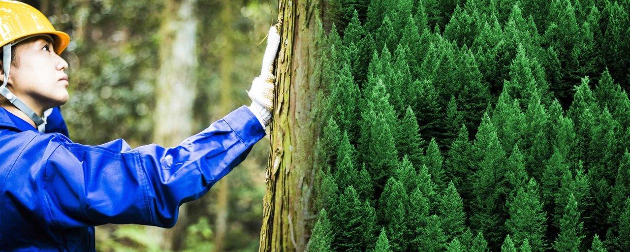 島根県森林組合連合会